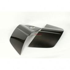 AUDI R8 V10 CARBON SIDE BLADES for V8 fitment